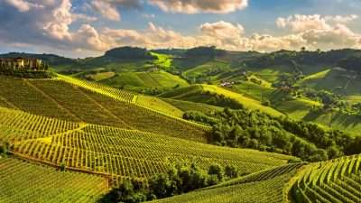 most popular, italy walking holidays, walking holidays in italy, Piedmont Wine Country: Barbaresco to Barolo, A new walking holiday in beautiful Piedmont
