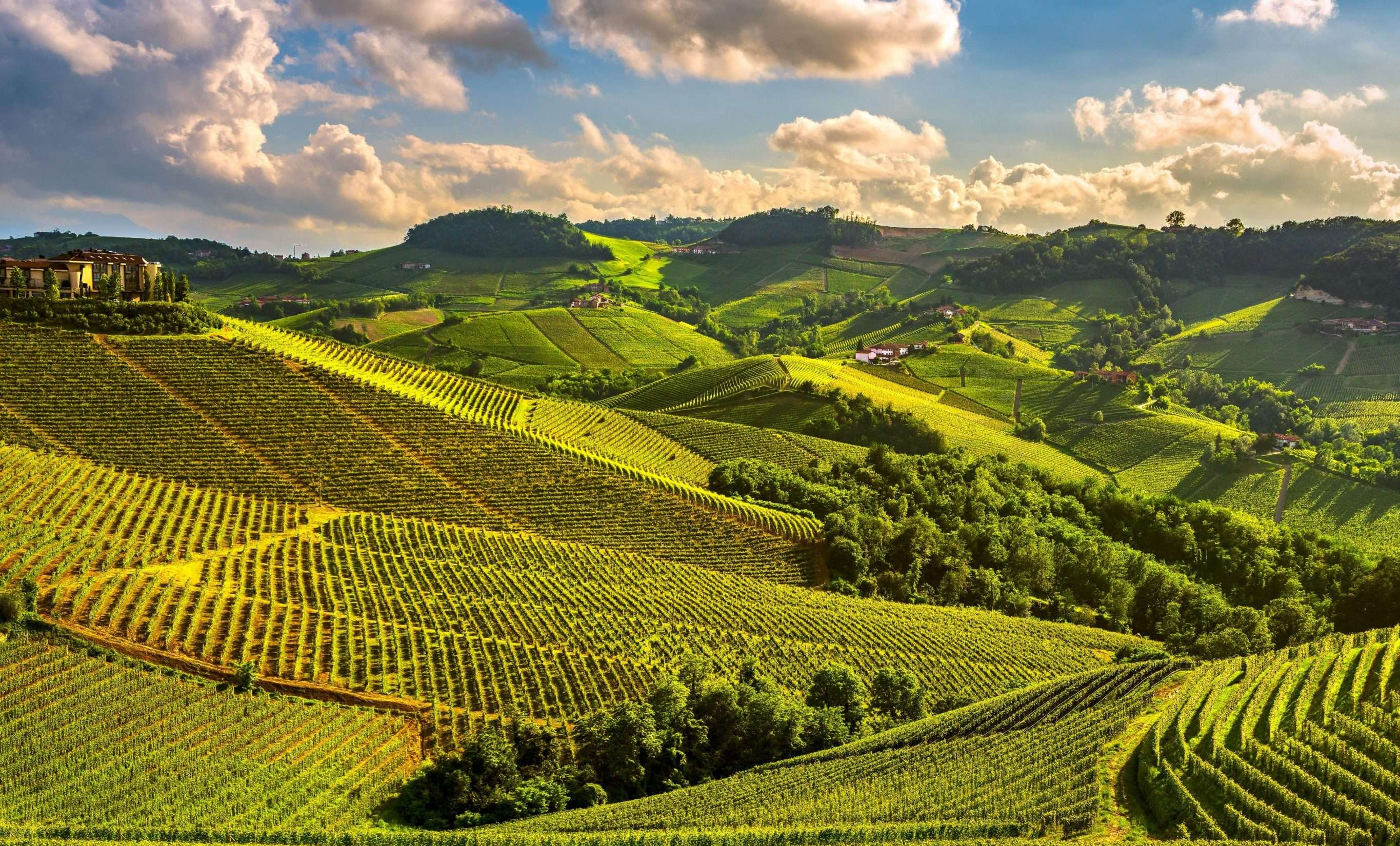 Italy Walking Holidays, Piedmont Wine Country Barbaresco and Barolo
