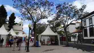 Coastal and Levada Trails of Madeira 59