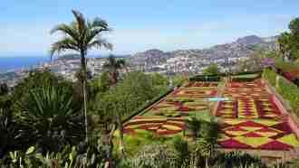 Coastal and Levada Trails of Madeira 56