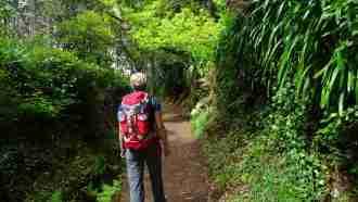 Coastal and Levada Trails of Madeira 45