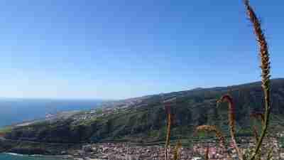 Coastal and Levada Trails of Madeira 44