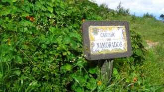 Coastal and Levada Trails of Madeira 23