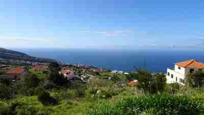 Coastal and Levada Trails of Madeira 21