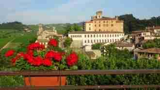 Wine Trails of Piedmont and Liguria: Alba to San Remo 53