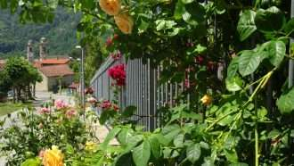 Wine Trails of Piedmont and Liguria: Alba to San Remo 46