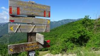 Wine Trails of Piedmont and Liguria: Alba to San Remo 37