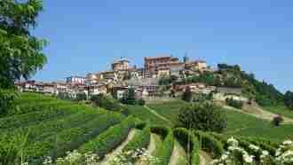 Wine Trails of Piedmont and Liguria: Alba to San Remo 28