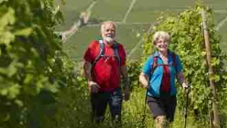 Wine Trails of Piedmont and Liguria: Alba to San Remo 24
