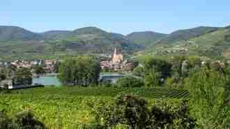 Walking in Wachau Wine Country 34