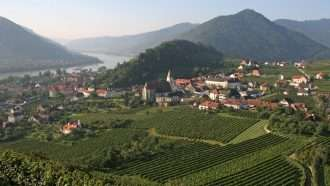 Walking in Wachau Wine Country 44
