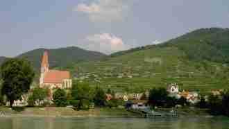 Walking in Wachau Wine Country 37
