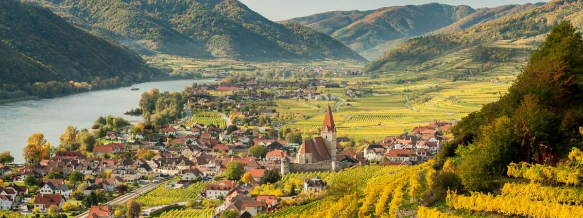 Walking in Wachau Wine Country 1