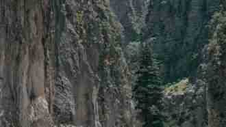 Gorges of West Crete 44