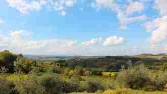 Chianti Wine Trails: Florence to Siena 33
