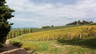 Chianti Wine Trails: Florence to Siena 31