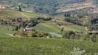 Chianti Wine Trails: Florence to Siena 28