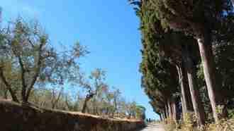 Chianti Wine Trails: Florence to Siena 25