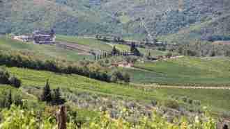 Chianti Wine Trails: Florence to Siena 24