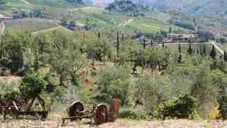 Chianti Wine Trails: Florence to Siena 23