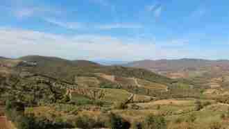Chianti Wine Trails: Florence to Siena 21