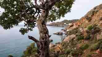 Gorges of West Crete 32