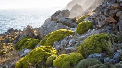 Gorges of West Crete 29
