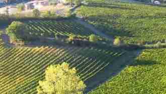 Chianti Wine Trails: Florence to Siena 17