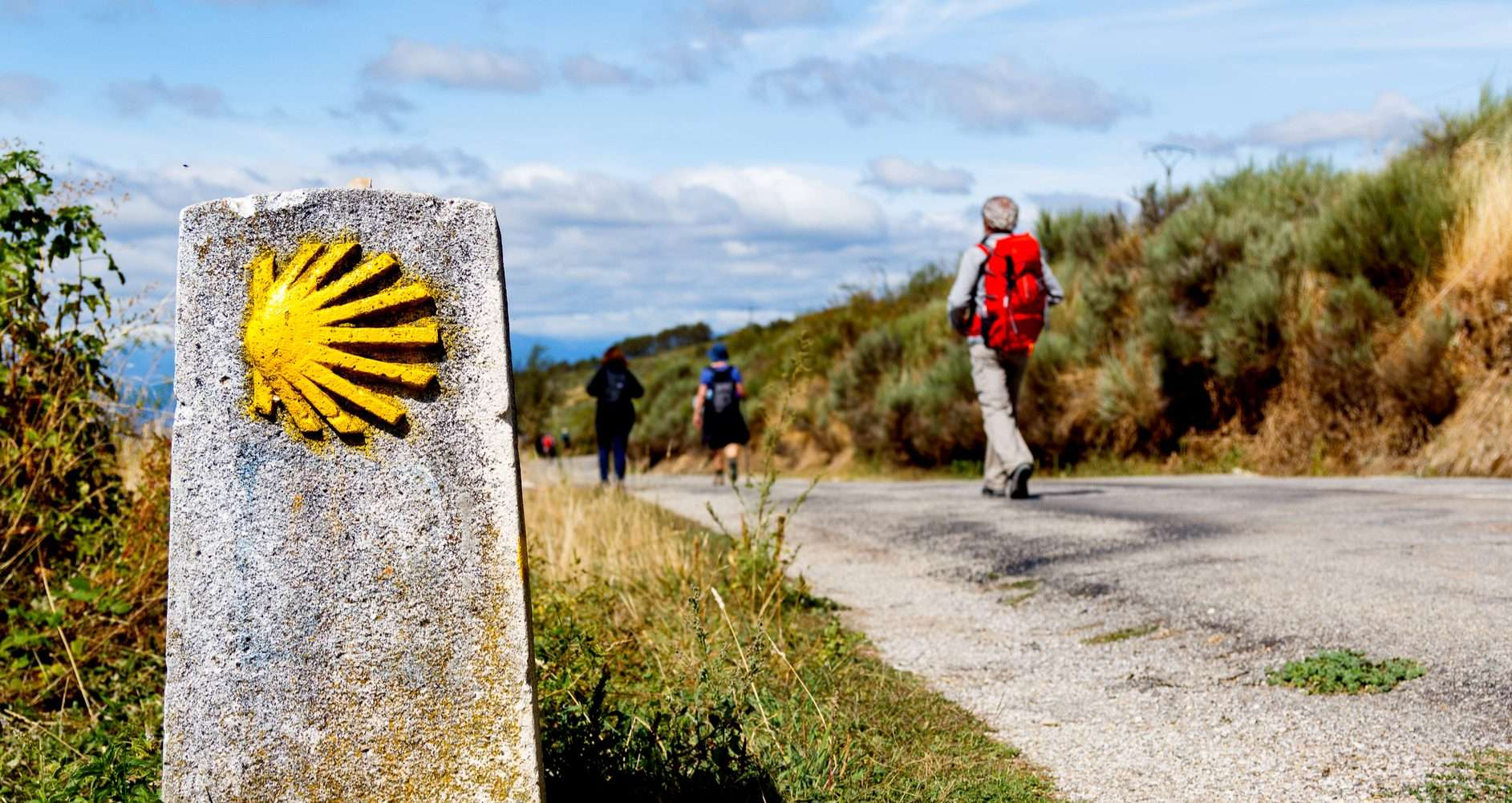 camino de santiago, the way of St James, Camino Walks and Pilgrimage Tours