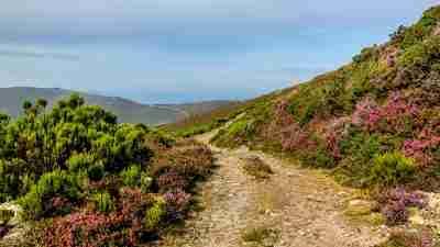 Camino Primitivo Highlights: Oviedo to Lugo, camino primitivo highlights, camino primitivo: oviedo to lugo