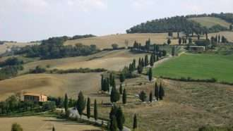 Via Francigena: San Miniato to Buonconvento 13