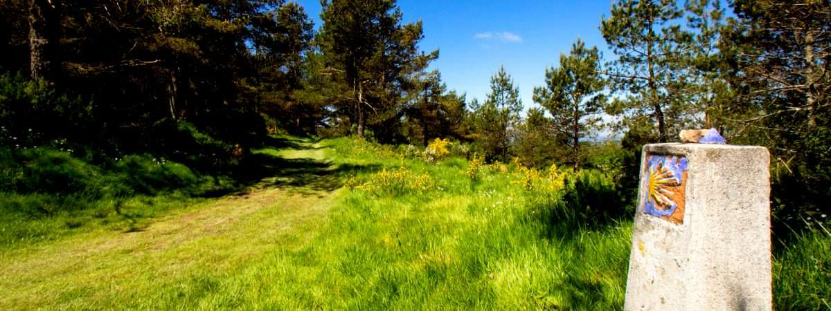 Full Camino Primitivo: Oviedo to Santiago 1