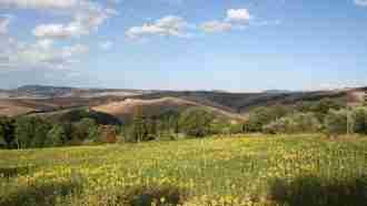 Via Francigena: San Miniato to Buonconvento 10