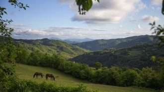 Medieval Umbria: Assisi to Spoleto 18