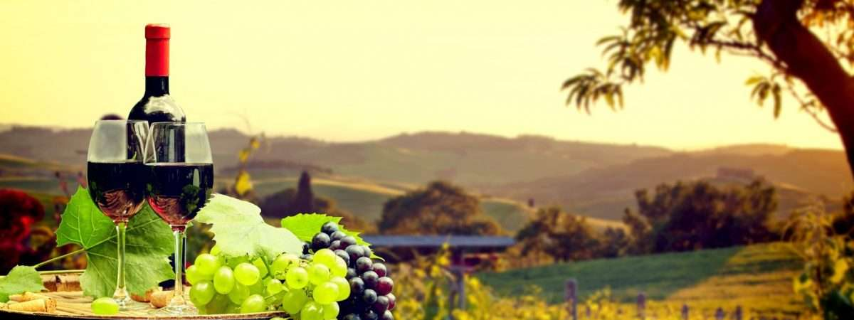 wine trails, wine trails walking holidays, wine trails walking, wine walking