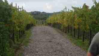 Alpe-Adria Trail: Cividale del Friuli to Trieste 8