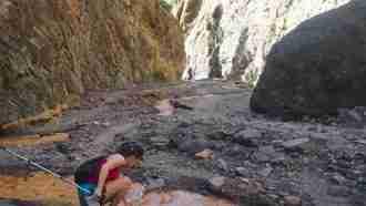 Trails and Calderas of La Palma 6