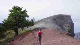 Trails and Calderas of La Palma 8