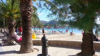 Mallorca Coast and Mountains 8
