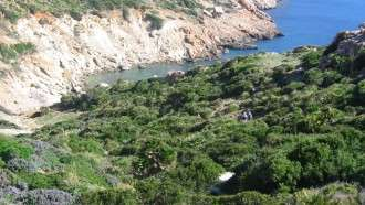 Mallorca Coast and Mountains 10