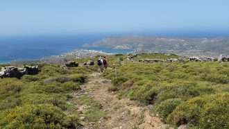 Cycladic Islands: Andros & Tinos 10