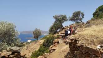 Cycladic Islands: Andros & Tinos 5