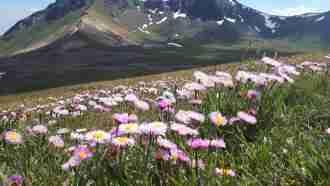 Zangezur Mountains Trek in Armenia 4