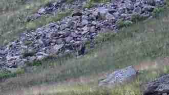 Zangezur Mountains Trek in Armenia 3