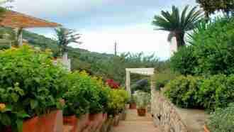 Capri, Ischia and Procida Island Walks