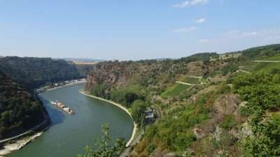 Castles and Vineyards of the Rhine Valley 12