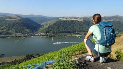 Castles and Vineyards of the Rhine Valley 25