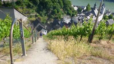 Castles and Vineyards of the Rhine Valley 27