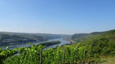 Castles and Vineyards of the Rhine Valley 29
