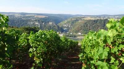Castles and Vineyards of the Rhine Valley 30